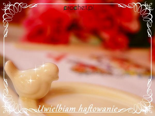 fotblog5d