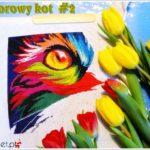 Kolorowy kot Norsvet – odsłona 2