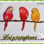 Sal z papużkami – odsłona 4