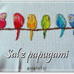 Sal z papugami